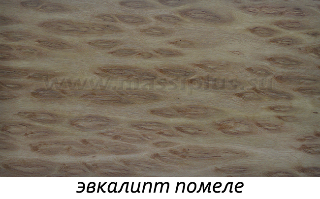 Древесина эвкалипт помеле